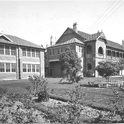 Waitara Mercy Block and Nursery